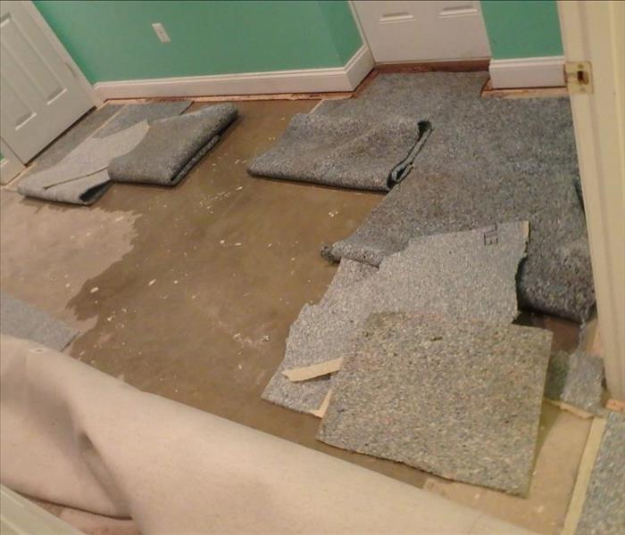 Sump failure led to water damage in Bowie, Maryland Before