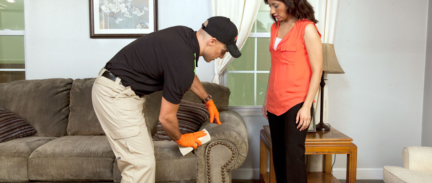 Bowie, MD carpet upholstery cleaning